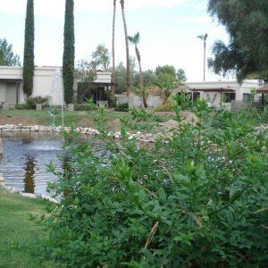 Pool 16
